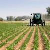 Approvato il decreto sul rilancio dei settori agricoli in crisi